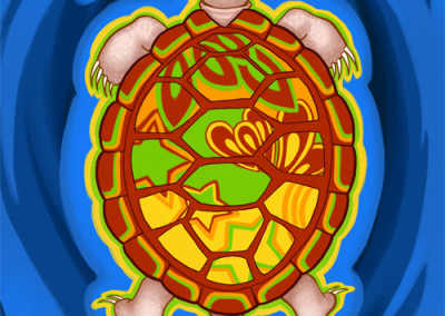 Tortoise (2011)